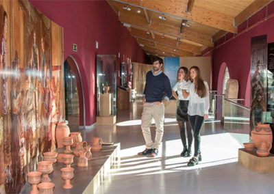Self-guided tour wine museum Emina Ribera del Duero