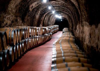 Esencia Carlos Moro La Rioja