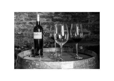 vinos-de-prestigio (4)